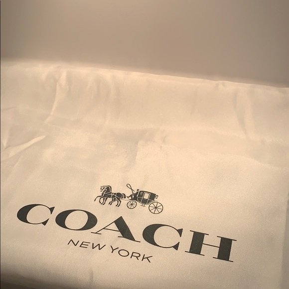 Purse size Coach dust bag